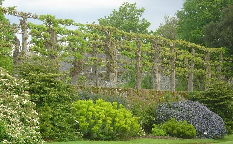 Rendez Vous Aux Jardins En Bretagne Association Des Parcs Et