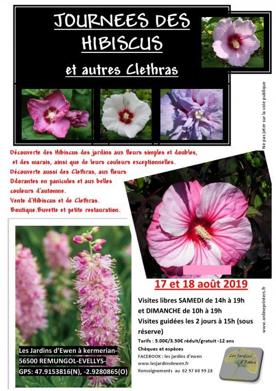 prospectus-hibiscus-verso-2019.jpg