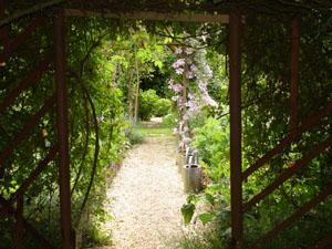 jardindesmelangesg0.jpg