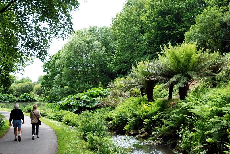 Jardin du conservatoire botanique national de brest for Boulevard du jardin botanique 20