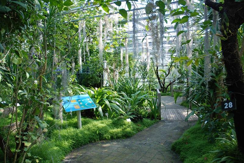 jardin du conservatoire botanique national de brest. Black Bedroom Furniture Sets. Home Design Ideas