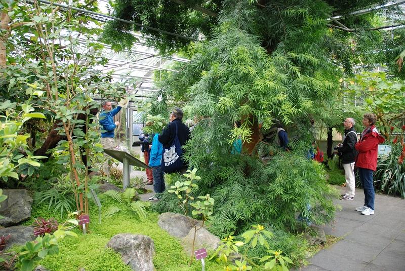 Jardin du Conservatoire botanique national de Brest - Association des Parcs et Jardins de Bretagne