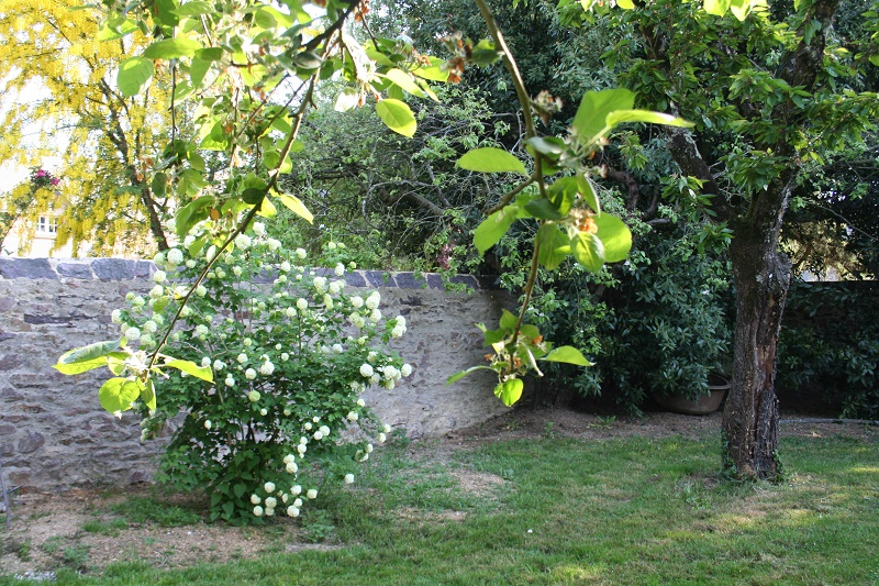 Jardin mac mahon association des parcs et jardins de for Plan jardin mac